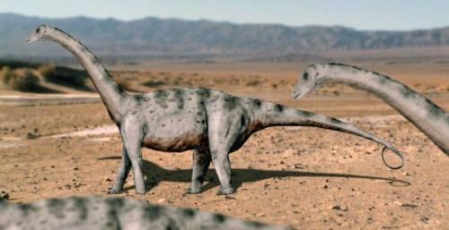 Tapuiasaurus NT.jpg